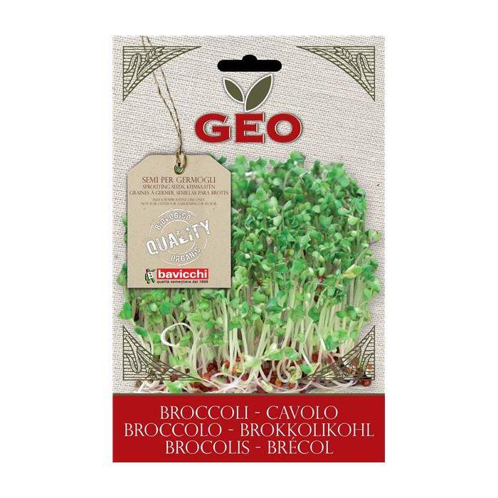 Brócolos - Sementes Para Germinar Bio