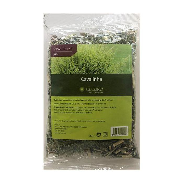 Chá Cavalinha Planta
