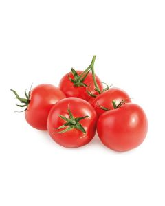 Tomate Redondo Bio - Kg