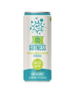 Bebida Bio Kefir De Água - Original