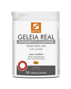 Geleia Real 500